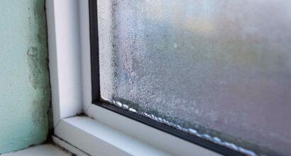 Condensation Mould Control