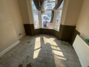 damp and mould treatemnt